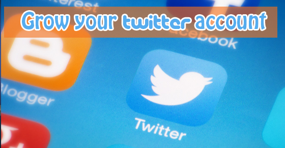 Post image for 7 Strategies To Nurture Your Budding Twitter Account