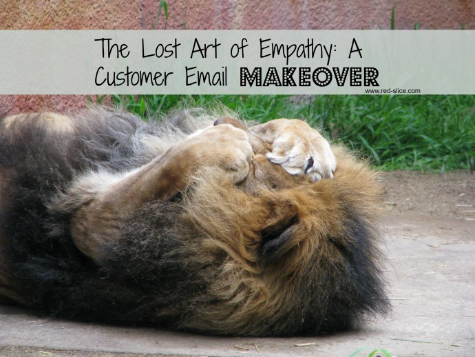 The Lost Art of Empathy: A Customer Email Makeover